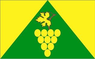 Flaga Gminy Zielona Góra - wersja urzędowa